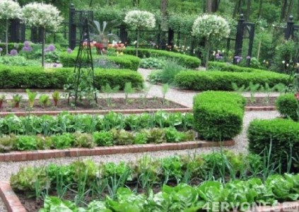 Французский огород фото