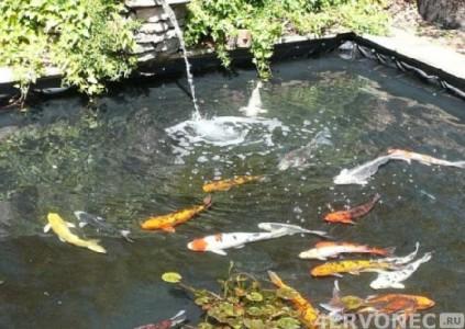 Садовый фонтан с рыбками