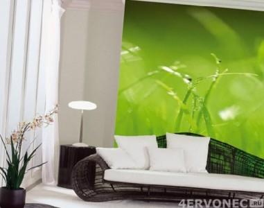 Фотообои с изображением травы