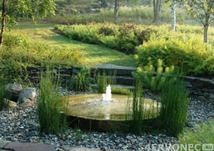 Дизайн сада и огорода: фото водоема