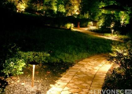 Вечерняя иллюминация в саду
