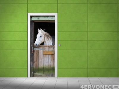 Фабричный принт на двери