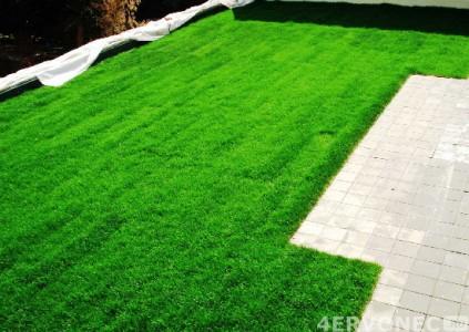 Зеленые насаждения как балласт при монтаже мембраны-ПВХ